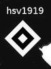 hsv1919